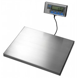 Salter WS300 Platform Weighing Scale