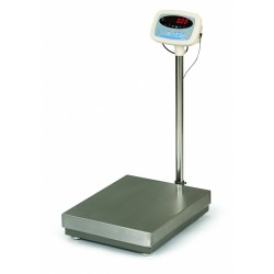 Salter S100 Bench Scale